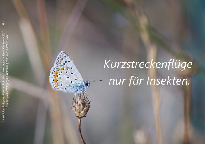 """Demo-Plakat """"Kurzstreckenflüge nur für Insekten."""" (aus: Theaterstück 'Greta', s. Fischer 2019)"""